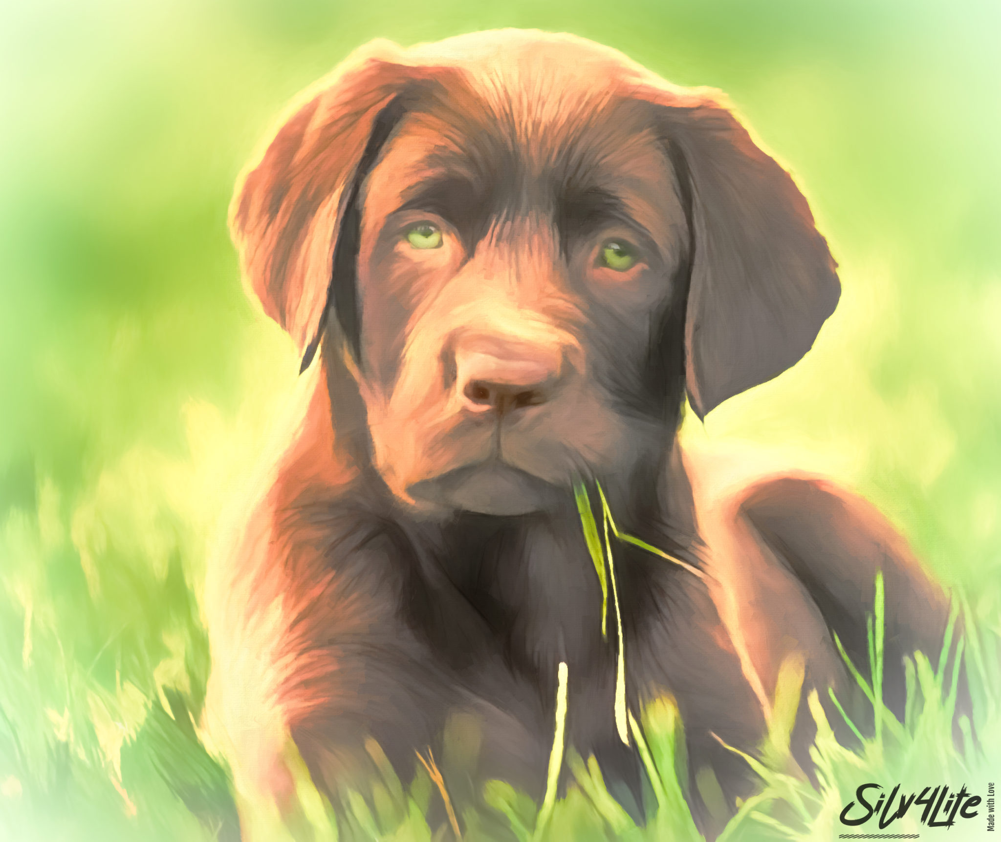 Read more about the article Dog on Field – Paint